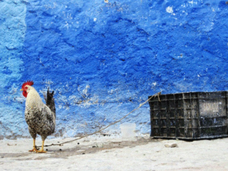 Travel to CHEFCHAOUEN54.jpg