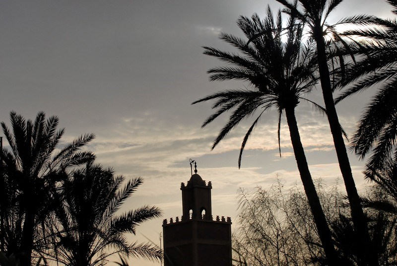 Travel to MARRAKECH 19.jpg