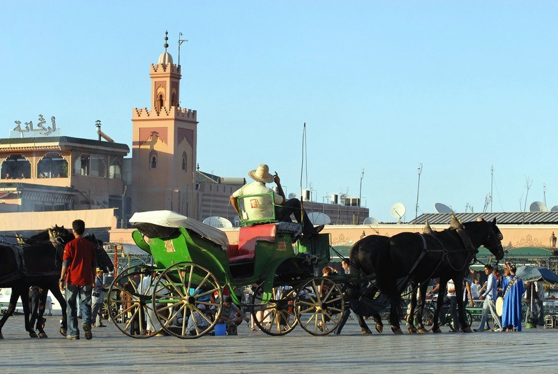 Travel to MARRAKECH 32.jpg