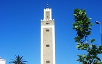 Excursion to Tangier from Malaga and Costa del Sol - 1 day