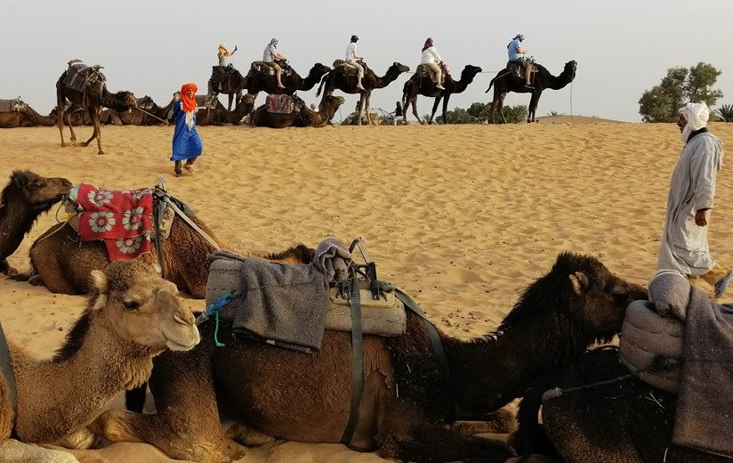 Grand Tour to Morocco 7 days from Marrakech to Algeciras